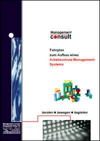 Fahrplan zum Aufbau eines Arbeitsschutz-Management-Systems
